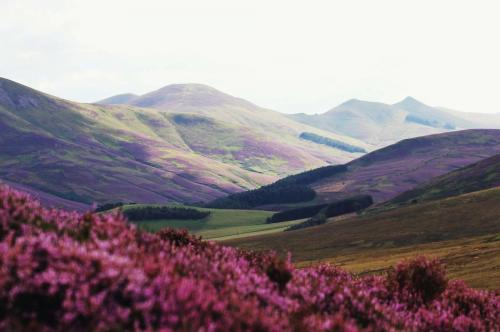 scotland luxury travel
