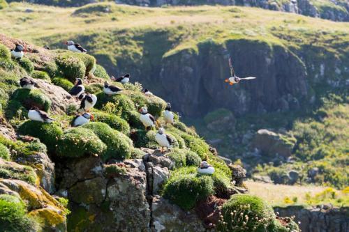 scotland visite stay